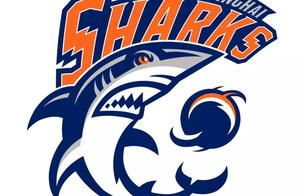 """2.0时代""""大鲨鱼""""新标你喜欢吗? CBA九支俱乐部今公布新logo"""